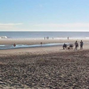 Area beaches near Mount Pleasant are close to Shell Landing